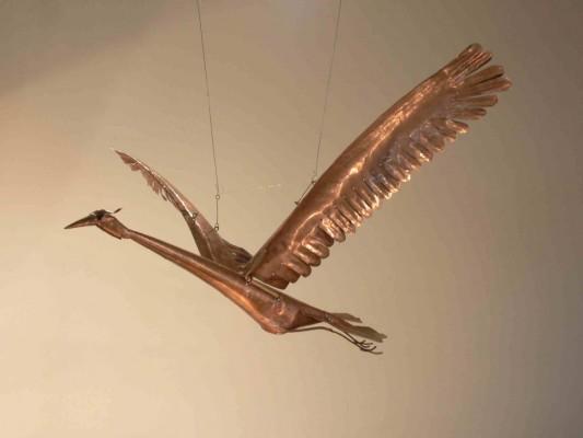 P1010195.jpg stork in flight