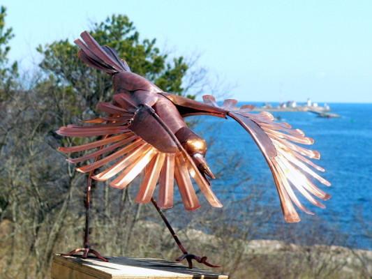 water bird foraging 2